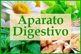Las mejores recetas con medicina natural para el aparato digestivo