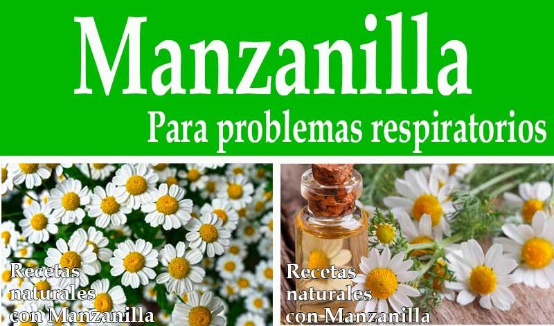 Manzanilla-para-problemas-respiratorios